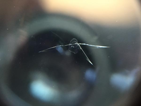 ダイハツ タントのフロントガラスリペア