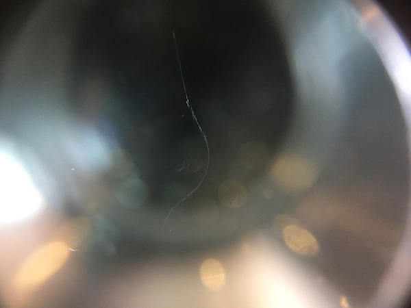 デミオのフロントガラスリペア